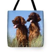 Irish Red Setter Dog Tote Bag