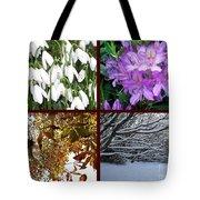 Irish Seasons Tote Bag