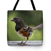 Is Cecil Around Tote Bag
