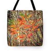 Is It Live Or Is It Memorex Tote Bag by Frozen in Time Fine Art Photography