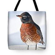 Is It Spring Yet? Tote Bag