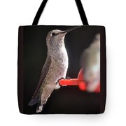 Is This Better Tote Bag