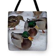 Isabella's Ducks Tote Bag