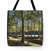 Island Fort Road Ninety Six National Historic Site Tote Bag