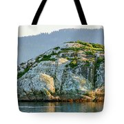 Island In A Lake, Glacier Bay National Tote Bag