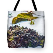 Island In The Snow Tote Bag