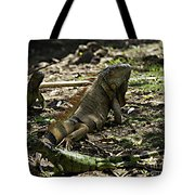 Island Lizards Four Tote Bag