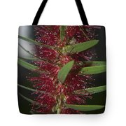Island Rains Tote Bag