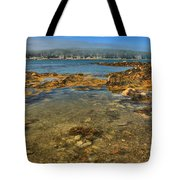 Isle Au Haut Beach Tote Bag by Adam Jewell