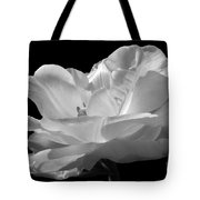 Isolated White Tulip Tote Bag