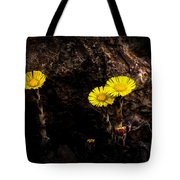 It Only Takes A Little Bit Of Light Tote Bag
