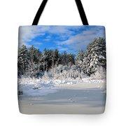 It Snow Reason Tote Bag