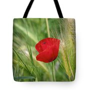 Italian Poppy Tote Bag