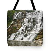 Ithaca Falls Tote Bag