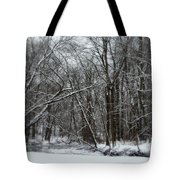 Its A Beautiful Winter Tote Bag