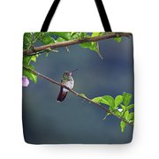 It's A Big World Out There... Tote Bag
