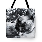 It's All About You Tote Bag
