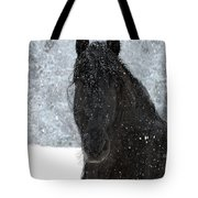 It's Friesian Out Here Tote Bag