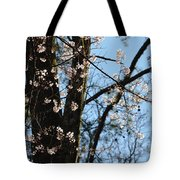 It's Spring 2013 Tote Bag
