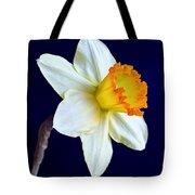 It's Spring - Square Tote Bag