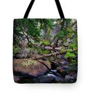Ivanhoe Serenity Tote Bag