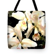 Ivory Cattleya Orchids Tote Bag