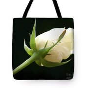 Ivory Rose Bud Tote Bag