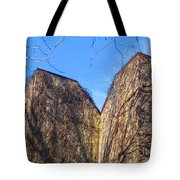 Ivy Covered Wall Tote Bag