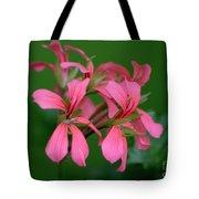 Ivy Geraniums Tote Bag