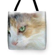 Izzy's Eyes Tote Bag