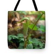 Jack-in-the-pulpit Arisaema Triphyllum Tote Bag