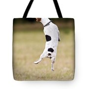 Jack Russell Jumping For Ball Tote Bag