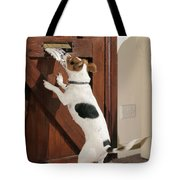 Jack Russell Terrier Gets Paper Tote Bag