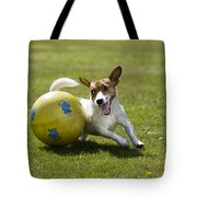 Jack Russell Terrier Plays With Ball Tote Bag by Johan De Meester