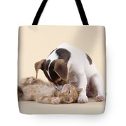 Jack Russell Terrier Puppy And Kitten Tote Bag