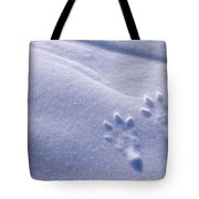 Jackrabbit Tracks In Snow Tote Bag