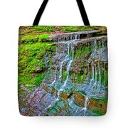 Jackson Falls At Mile 405 Natchez Trace Parkway-tennessee Tote Bag