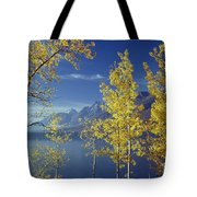 1m9206-jackson Lake And Aspens, Wy Tote Bag