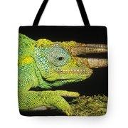 Jacksons Chameleon Male East Africa Tote Bag