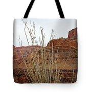 Jacob's Staff Grand Canyon Tote Bag