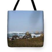 Jagged California Coastline Tote Bag