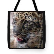 Jaguar-09498 Tote Bag