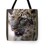 Jaguar-09499 Tote Bag