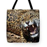 Jaguar Intensity Tote Bag