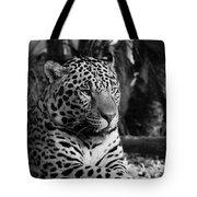 Jaguar Mono Tote Bag