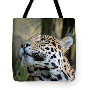 Jaguar Portrait Tote Bag