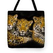 Jaguars Tote Bag