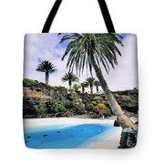 Jameos Del Agua On Lanzarote Tote Bag