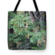jammer Dripping Seeds Tote Bag