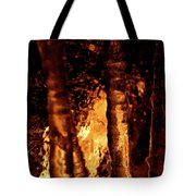Jammer Fire And Ice 022 Tote Bag